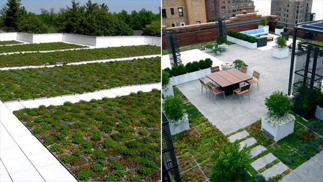 Semi-Extensive Green Roofs – Characteristics – Things Required