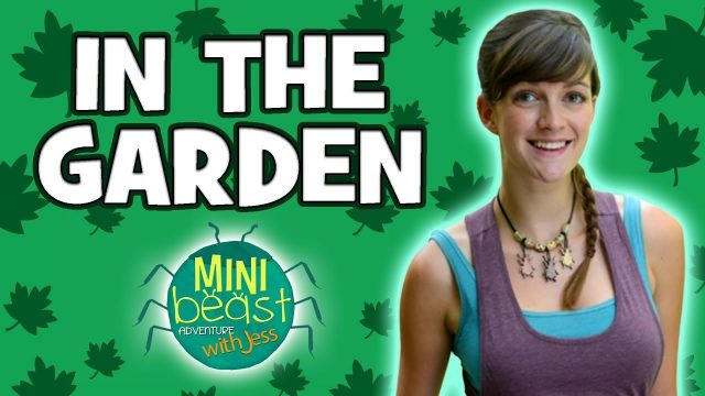 Minibeast Adventure with Jess – Bugs in the Garden | TV Shows for Kids | Wizz