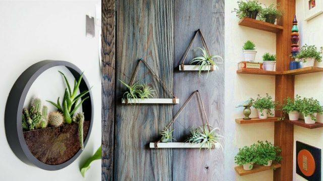 25+ Creative Vertical Wall Garden Ideas – Make your New Home Green