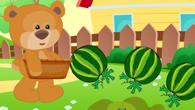 Fruits and plants for kids