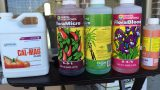 How to Mix Hydroponic Nutrients – Masterblend & General Hydroponic Flora Series