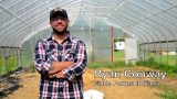 Fable Farms Garden Tower 2 Grow Test: Food Freedom Experiment – Do Garden Towers Really Work?