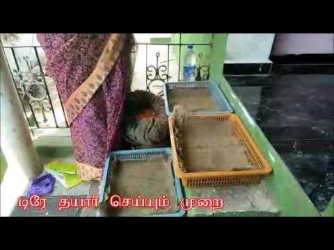 Hydroponic method – Tamil Nadu poonamallee