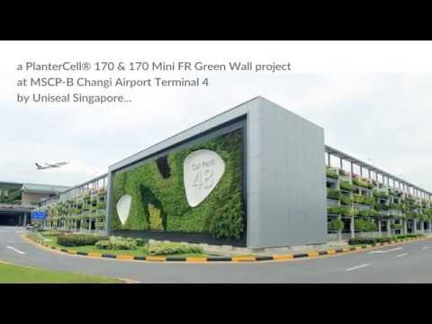 Singapore Changi Airport T4 Green Wall by Uniseal