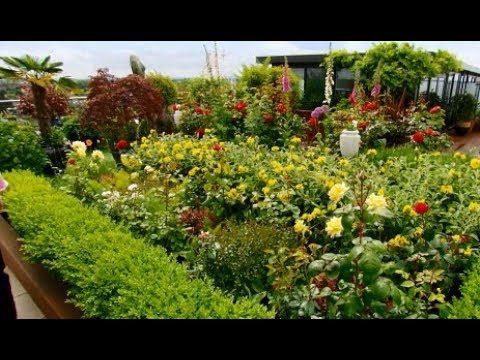 Roof terrace garden, Kew, UK