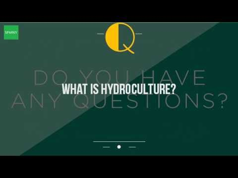 What Is Hydroculture?