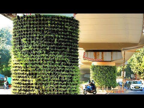 Vertical gardens turn Metro's Blue Line green