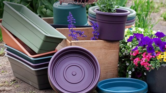 Try To Understand Container Gardening – Best Benefits How To Grow Inexpensively