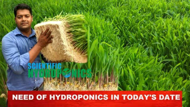 Ashwin Sawant | What is the need of Hydroponics in todays date