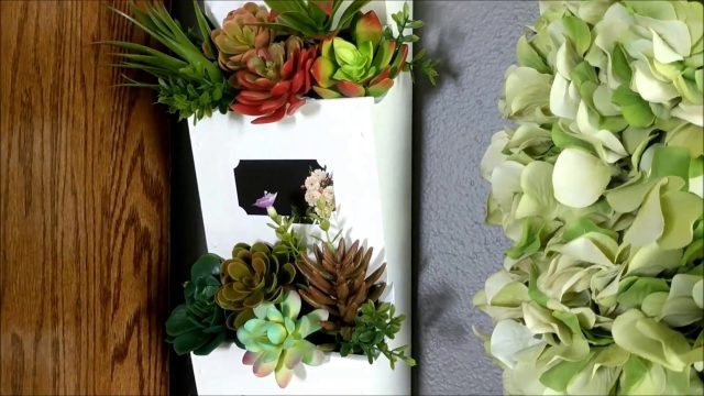 DIY Succulent Wall Decor