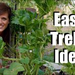 Easy & Inexpensive Trellis Ideas for Vining Plants and Just About Any Plant in Your Garden