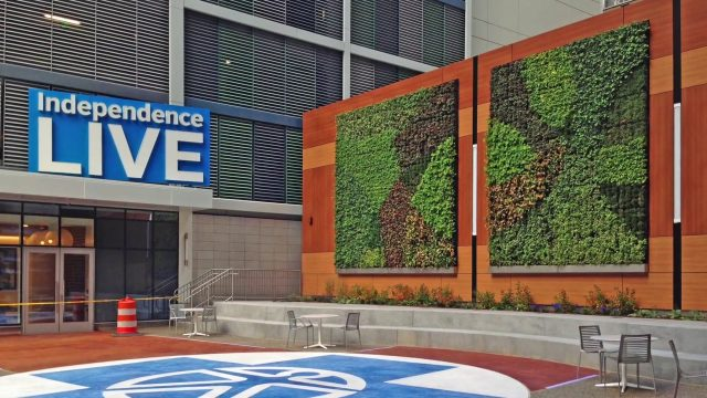 Independence Blue Cross Living Wall – Project of the Week 8/28/17