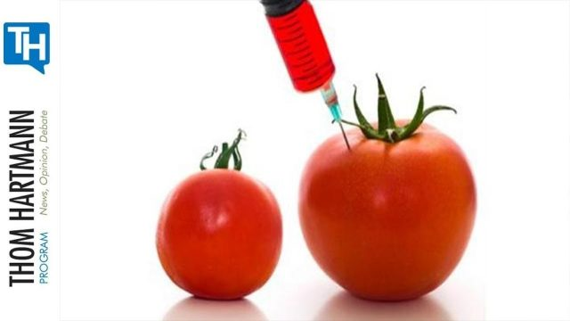 Are Hydroponics Watering Down Organic Food Standards? (w/Guest Lisa Stokke)