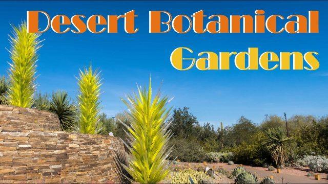 Exploring The Desert Botanical Gardens in Phoenix Arizona 2017 Vlog