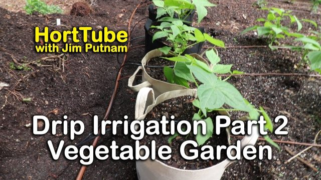 How to Install Drip Irrigation – Part 2 Vegetable Garden