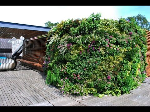 Private Roof Terrace & Greenwall Landscape Design – Project of the Week 12/14/15