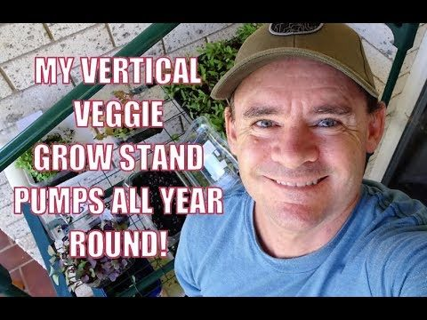 Vertical Vegetable Container Gardening all Year Round