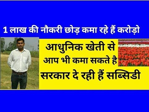 Poly house ki lagat aur fayde hindi | polyhouse farming subsidies