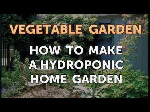 How to Make a Hydroponic Home Garden