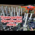 Plant Toowwer Garden cara  Pembibitan hydroponic