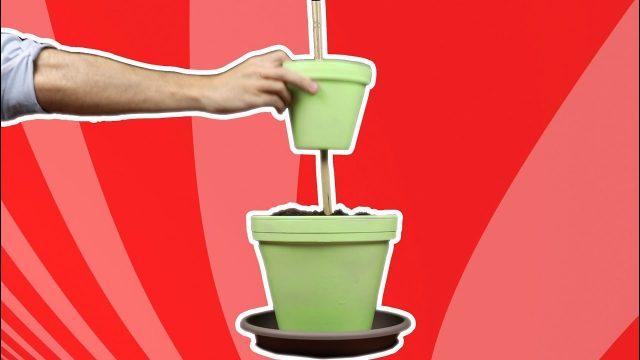 Cómo construir un jardín vertical de hierbas aromáticas
