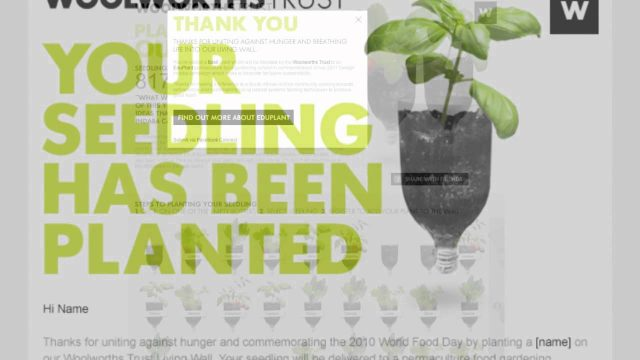 The Woolworths Living Wall – Digital Marketing Case Study