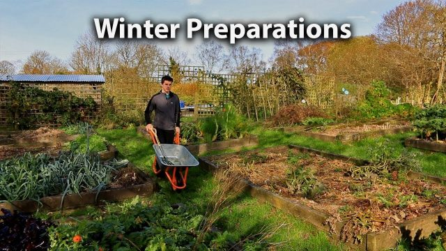Preparing our Vegetable Garden for Winter