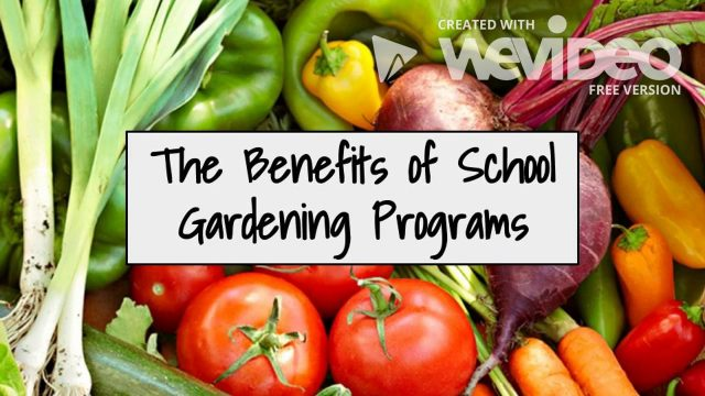 The Benefits of a School Gardening Program