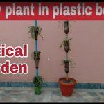How to make vertical garden, How to grow plant in plastic bottles, DIY plastic bottles
