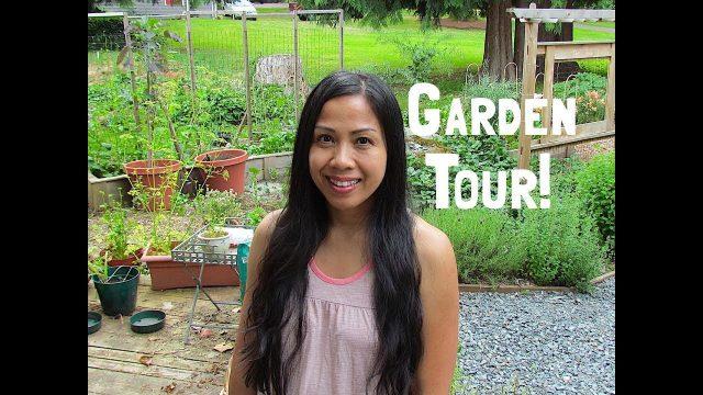 Garden Tour and Garden Tips! June 2018