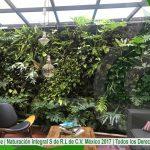 Jardines Verticales  Azoteas Verdes  Calentadores Solares  Sistemas para la mejora ambiental