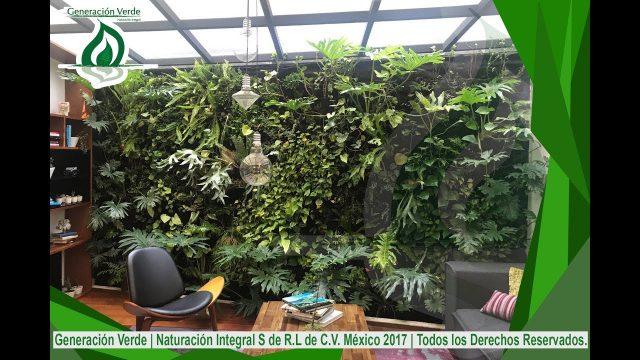 Jardines Verticales |Azoteas Verdes |Calentadores Solares| Sistemas para la mejora ambiental