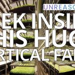 Peek Inside This HUGE Vertical Farm   David Rosenberg