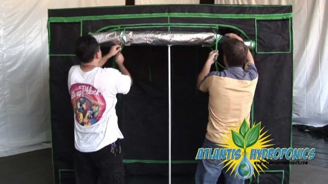 Large Hydroponic Grow Tent Setup