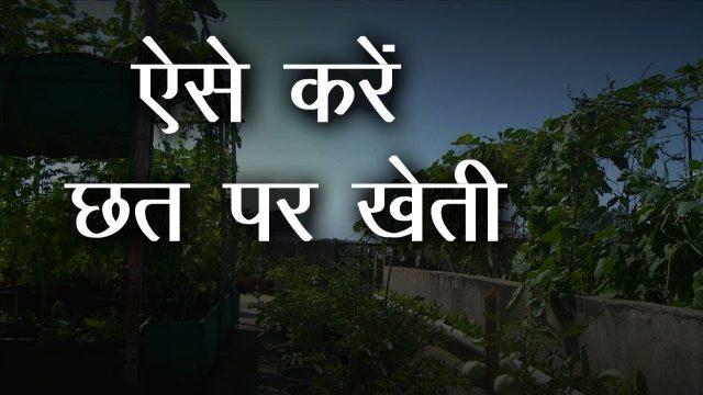छत पर बागवानी | Roof Gardening करना चाहते है तो पूरा Video जरूर देखें