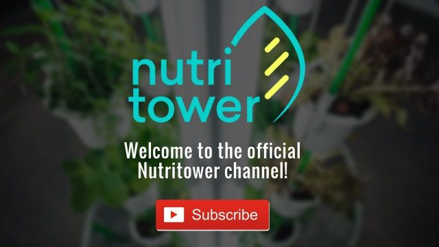 Welcome to Nutritower – Indoor gardening made easy!