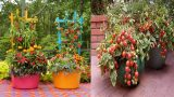 Creative Container Vegetable Gardening Ideas | Clever Gardens for Small Spaces
