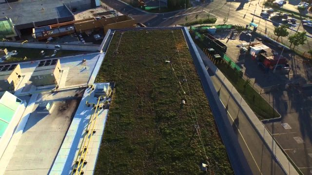 "Drone Video of Vegetated Roofs © 2015 Next Level Stormwater Management ""All Rights Reserved"""