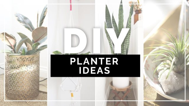 DIY PLANTER IDEAS | How to Decorate your Room with Plants | beautybitten