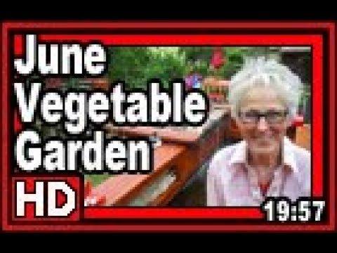 June Vegetable Garden – Wisconsin Garden Video Blog 835