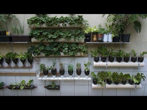 Bottle Garden, Planting in hanging Bottles on wall