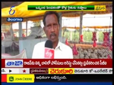 POULTRY FARMERS PROBLEMS – TS – జైకిసాన్ – 26th October 2015