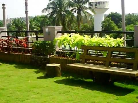 Roof top garden on our house in india