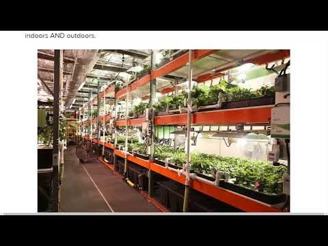 Worlds First Solar Powered Indoor Farm