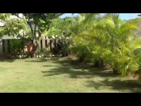 Amy–Kauai's Master Gardener