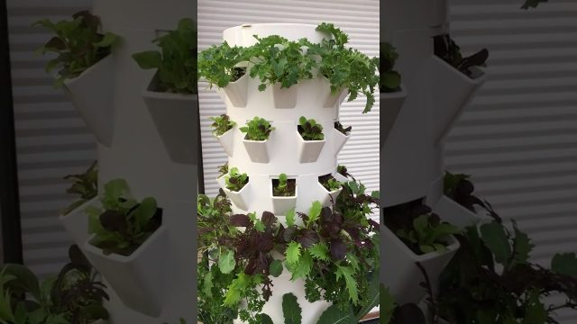 Tower Garden Extension Kit