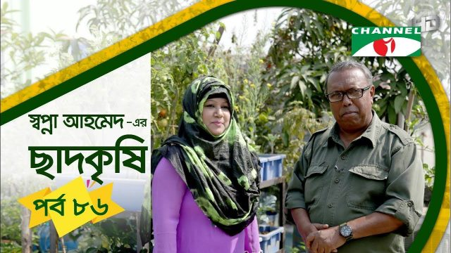 Rooftop farming | EPISODE 86 | HD | Shykh Seraj | Channel i | Roof Gardening | ছাদকৃষি |