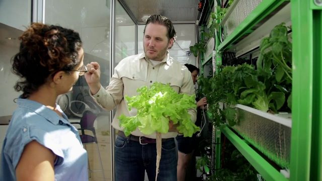 Engineering Everywhere Special Report: Vertical Farms