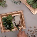 Succulent Frame Planters