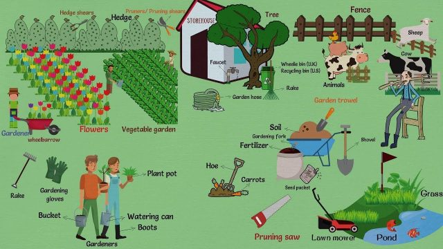 In the Garden Vocabulary in English | Learn Objects In the Garden